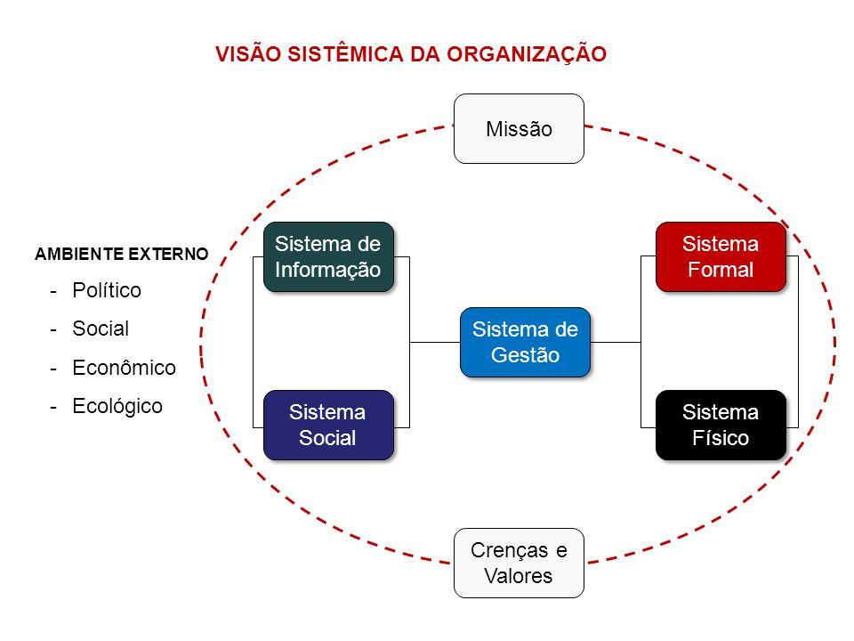 VISÃO SISTÊMICA DA ORGANIZAÇÃO AMBIENTE EXTERNO -Político -Social -Econômico -Ecológico Sistema de Gestão Sistema de Informação Sistema Social Sistema