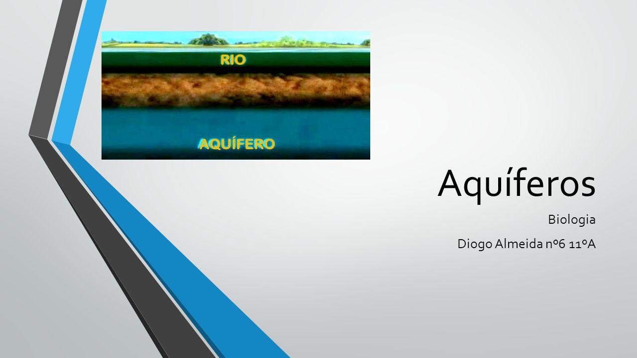 Aquíferos Biologia Diogo Almeida nº6 11ºA
