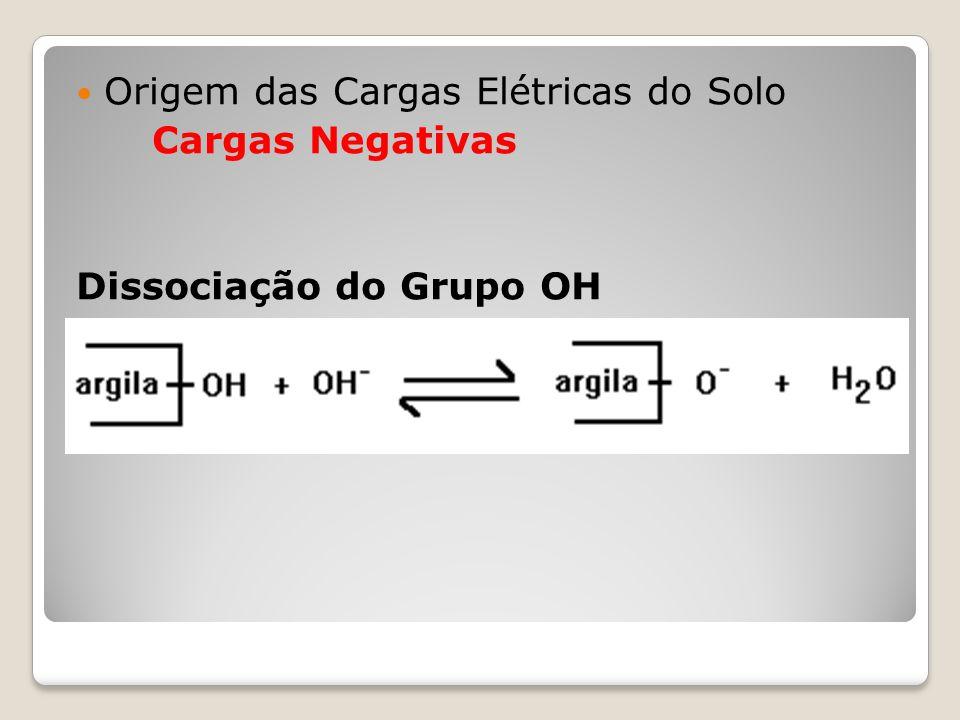 Origem das Cargas Elétricas do Solo Cargas Negativas Dissociação do Grupo OH