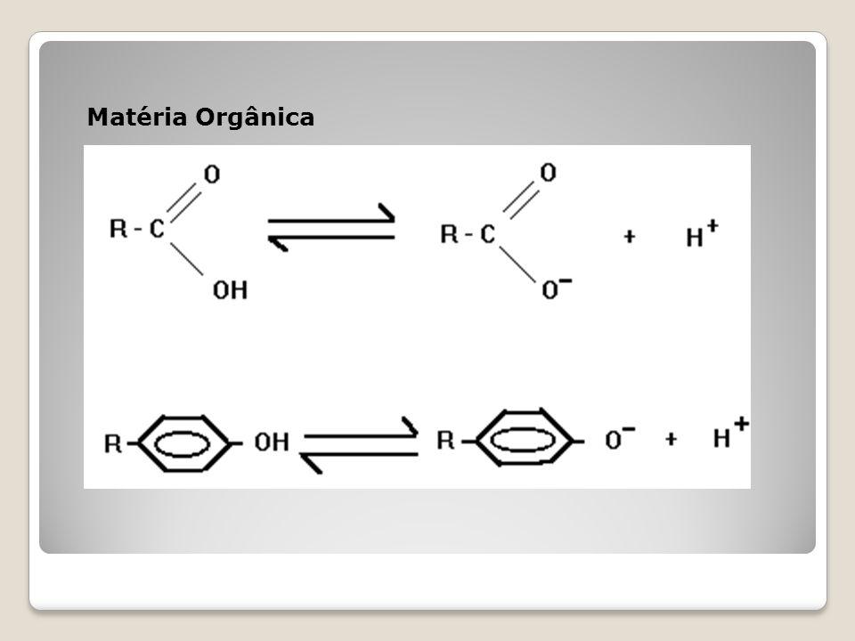 Matéria Orgânica