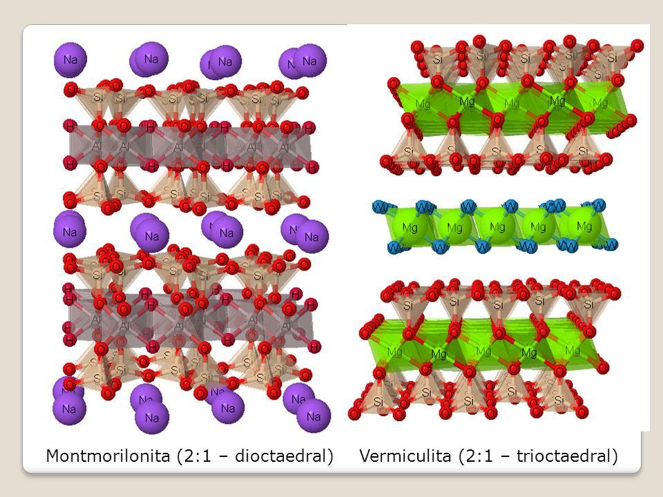 Montmorilonita (2:1 – dioctaedral)Vermiculita (2:1 – trioctaedral)