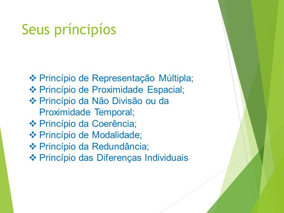 Seus príncipíos  Princípio de Representação Múltipla;  Princípio de Proximidade Espacial;  Princípio da Não Divisão ou da Proximidade Temporal;  P
