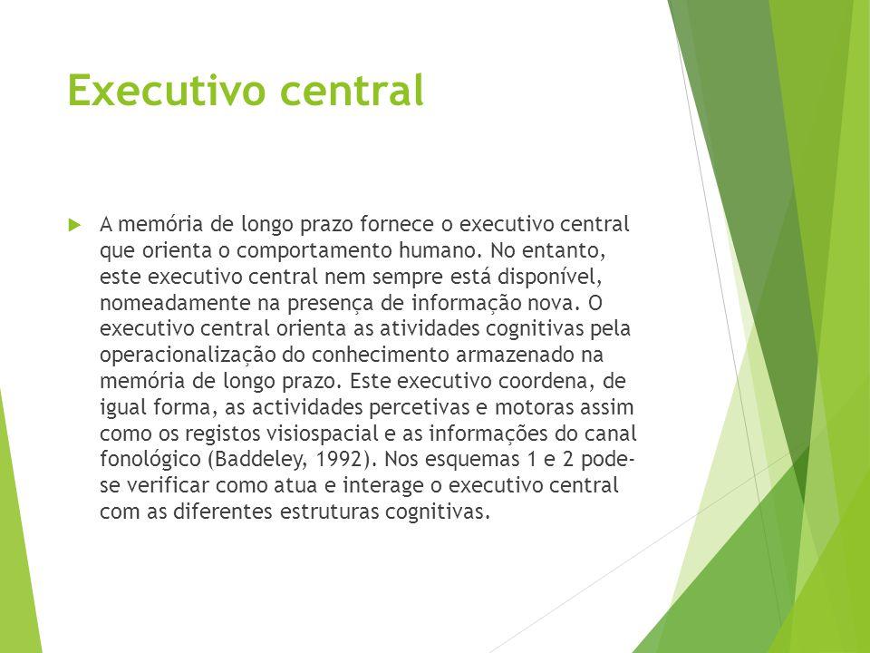 Executivo central  A memória de longo prazo fornece o executivo central que orienta o comportamento humano. No entanto, este executivo central nem se