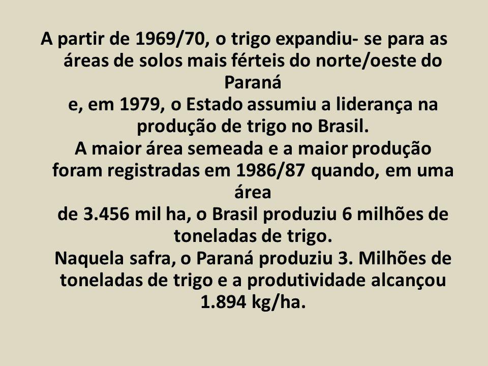 A partir de 1969/70, o trigo expandiu- se para as áreas de solos mais férteis do norte/oeste do Paraná e, em 1979, o Estado assumiu a liderança na pro