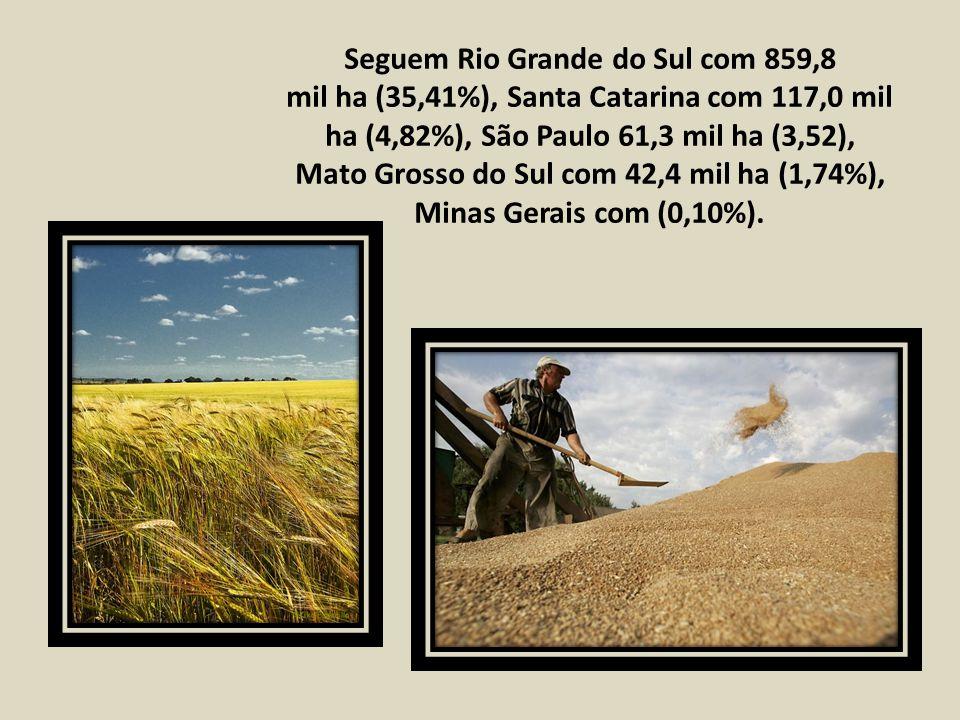 Seguem Rio Grande do Sul com 859,8 mil ha (35,41%), Santa Catarina com 117,0 mil ha (4,82%), São Paulo 61,3 mil ha (3,52), Mato Grosso do Sul com 42,4