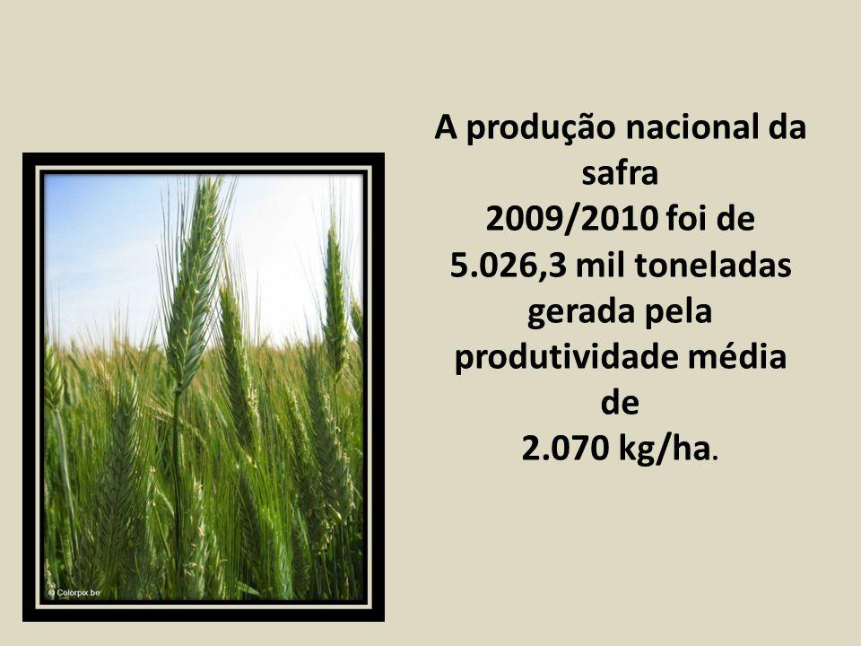 A produção nacional da safra 2009/2010 foi de 5.026,3 mil toneladas gerada pela produtividade média de 2.070 kg/ha.