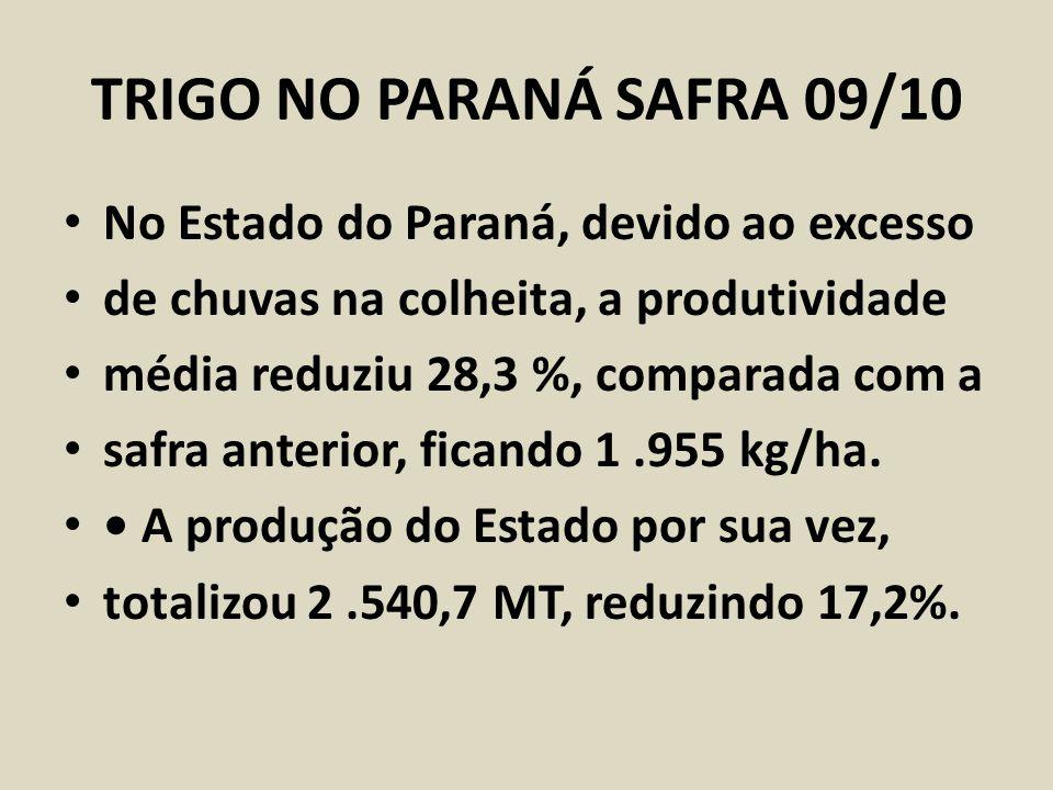TRIGO NO PARANÁ SAFRA 09/10 No Estado do Paraná, devido ao excesso de chuvas na colheita, a produtividade média reduziu 28,3 %, comparada com a safra