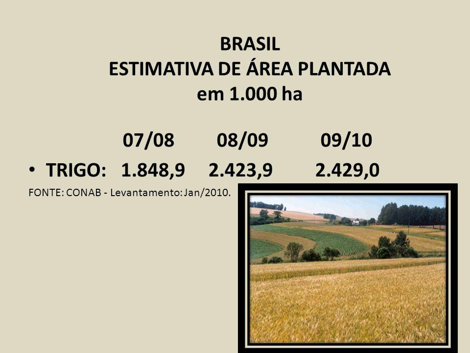 BRASIL ESTIMATIVA DE ÁREA PLANTADA em 1.000 ha 07/08 08/09 09/10 TRIGO: 1.848,9 2.423,9 2.429,0 FONTE: CONAB - Levantamento: Jan/2010.