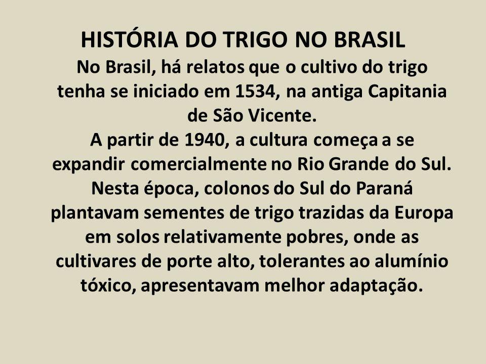 HISTÓRIA DO TRIGO NO BRASIL No Brasil, há relatos que o cultivo do trigo tenha se iniciado em 1534, na antiga Capitania de São Vicente. A partir de 19