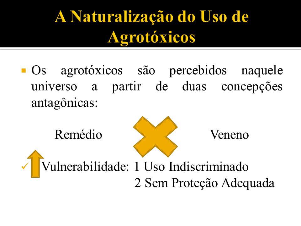  Os agrotóxicos são percebidos naquele universo a partir de duas concepções antagônicas: Remédio Veneno Vulnerabilidade: 1 Uso Indiscriminado 2 Sem Proteção Adequada