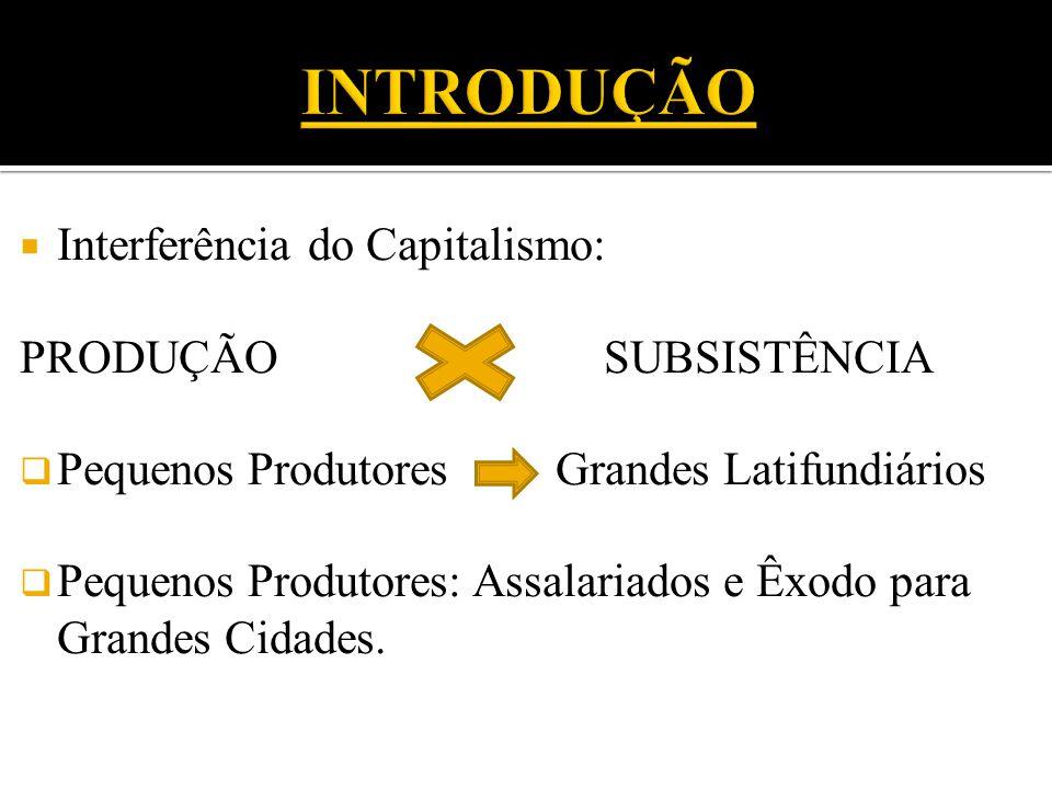  Interferência do Capitalismo: PRODUÇÃO SUBSISTÊNCIA  Pequenos Produtores Grandes Latifundiários  Pequenos Produtores: Assalariados e Êxodo para Grandes Cidades.