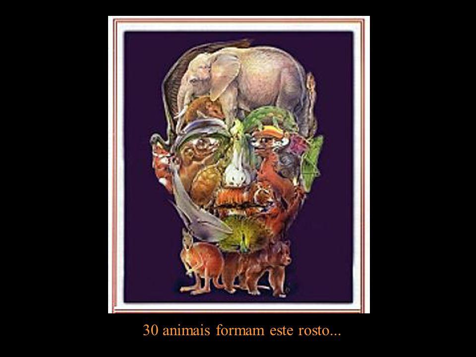 30 animais formam este rosto...