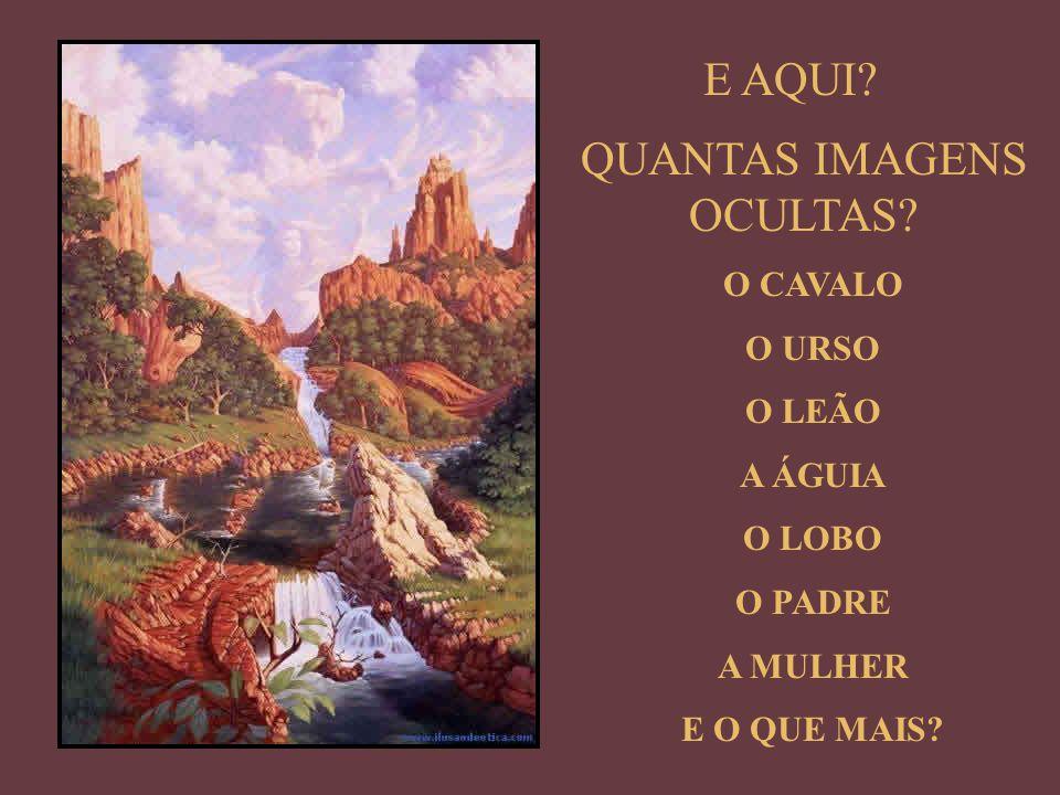 12 ELEFANTES / 6 CABEÇAS