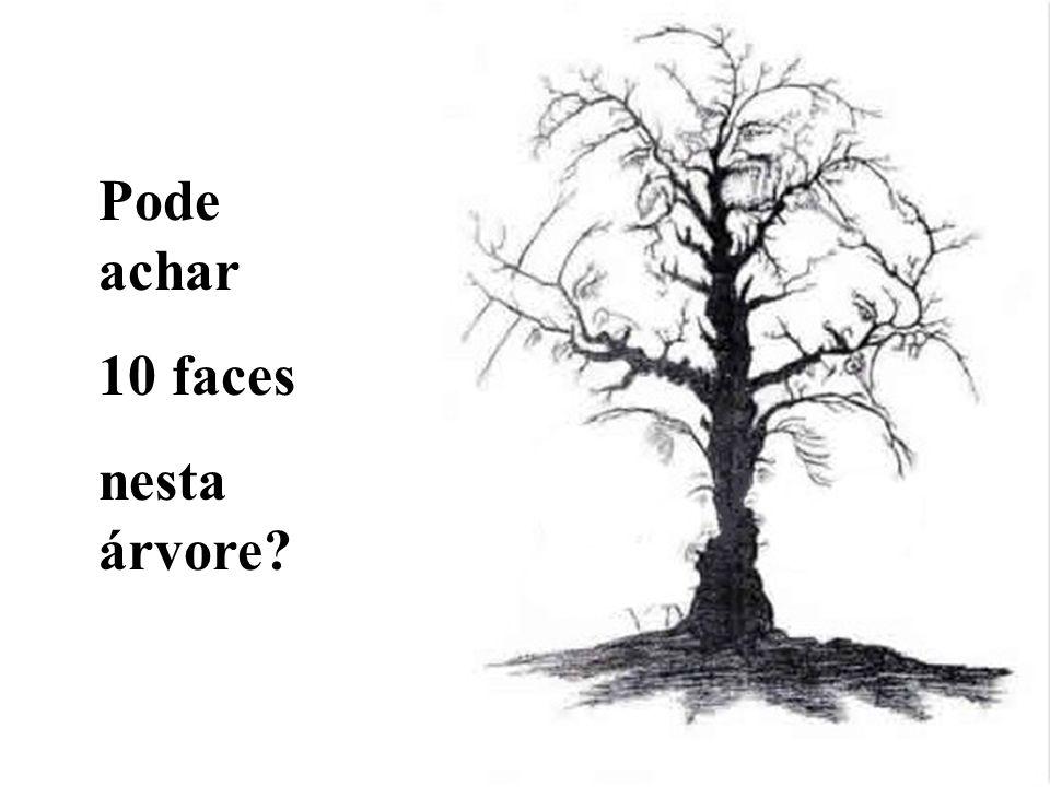 Pode achar 10 faces nesta árvore?