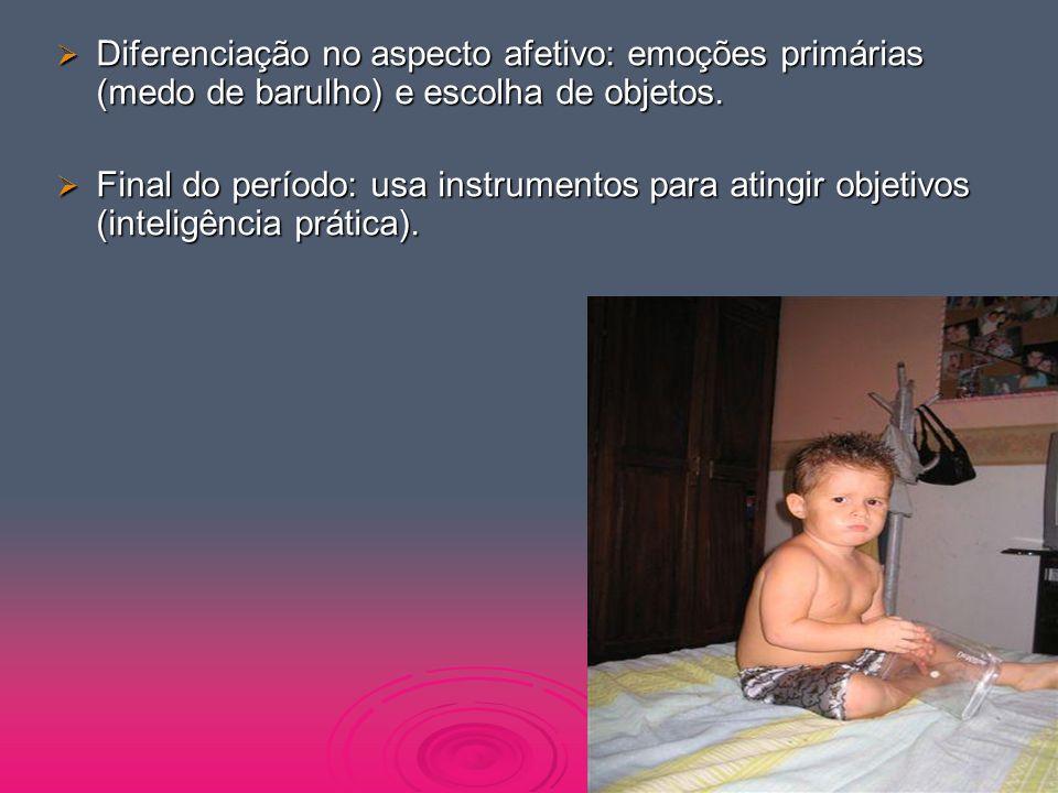  Diferenciação no aspecto afetivo: emoções primárias (medo de barulho) e escolha de objetos.  Final do período: usa instrumentos para atingir objeti
