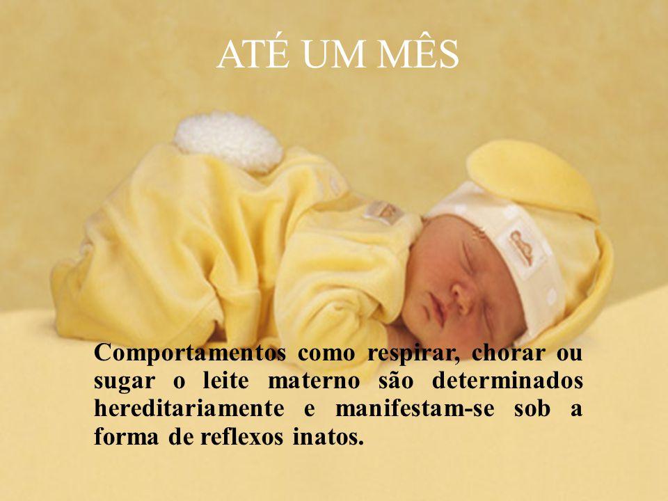 Comportamentos como respirar, chorar ou sugar o leite materno são determinados hereditariamente e manifestam-se sob a forma de reflexos inatos. ATÉ UM