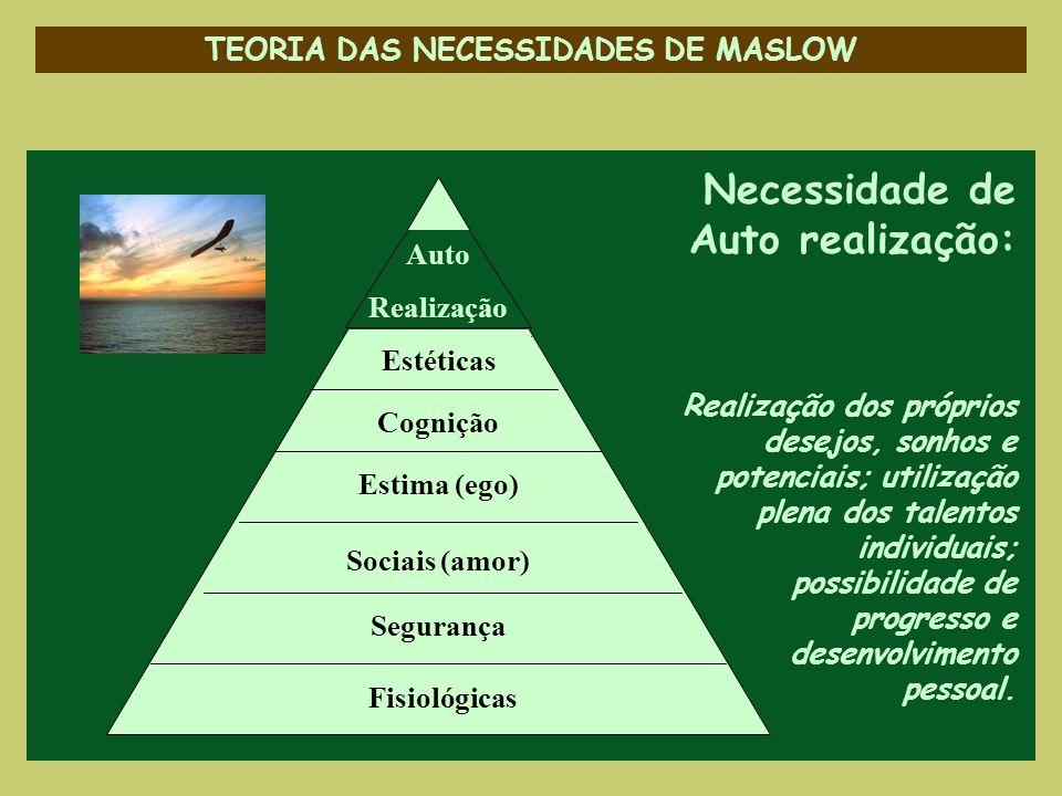 TEORIA DAS NECESSIDADES DE MASLOW Necessidade de Auto realização: Realização dos próprios desejos, sonhos e potenciais; utilização plena dos talentos