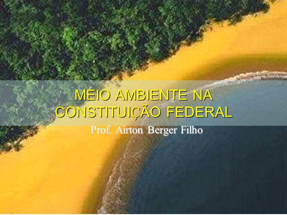 MEIO AMBIENTE NA CONSTITUI Ç ÃO FEDERAL Prof. Airton Berger Filho