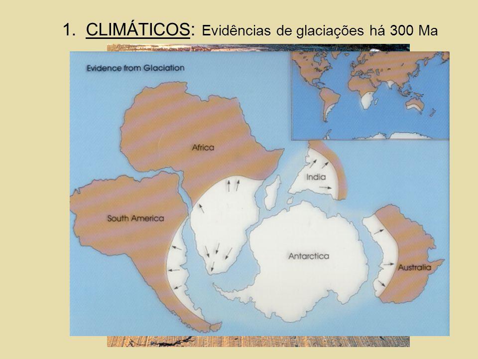 1.CLIMÁTICOS : Evidências de glaciações há 300 Ma