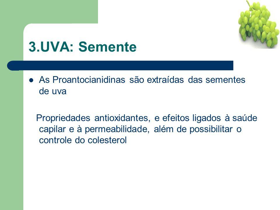 3.UVA: Semente As Proantocianidinas são extraídas das sementes de uva Propriedades antioxidantes, e efeitos ligados à saúde capilar e à permeabilidade