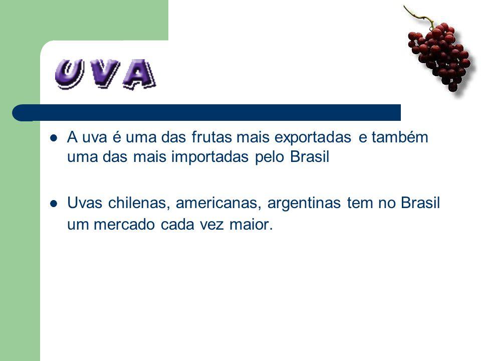 A uva é uma das frutas mais exportadas e também uma das mais importadas pelo Brasil Uvas chilenas, americanas, argentinas tem no Brasil um mercado cad