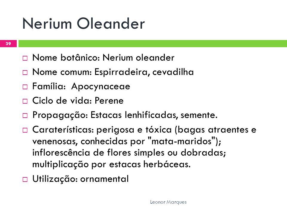 Nerium Oleander  Nome botânico: Nerium oleander  Nome comum: Espirradeira, cevadilha  Família: Apocynaceae  Ciclo de vida: Perene  Propagação: Estacas lenhificadas, semente.
