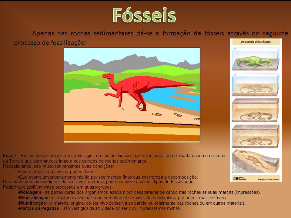 Apenas nas rochas sedimentares dá-se a formação de fósseis através do seguinte processo de fossilização: Fóssil – Restos de um organismo ou vestígios