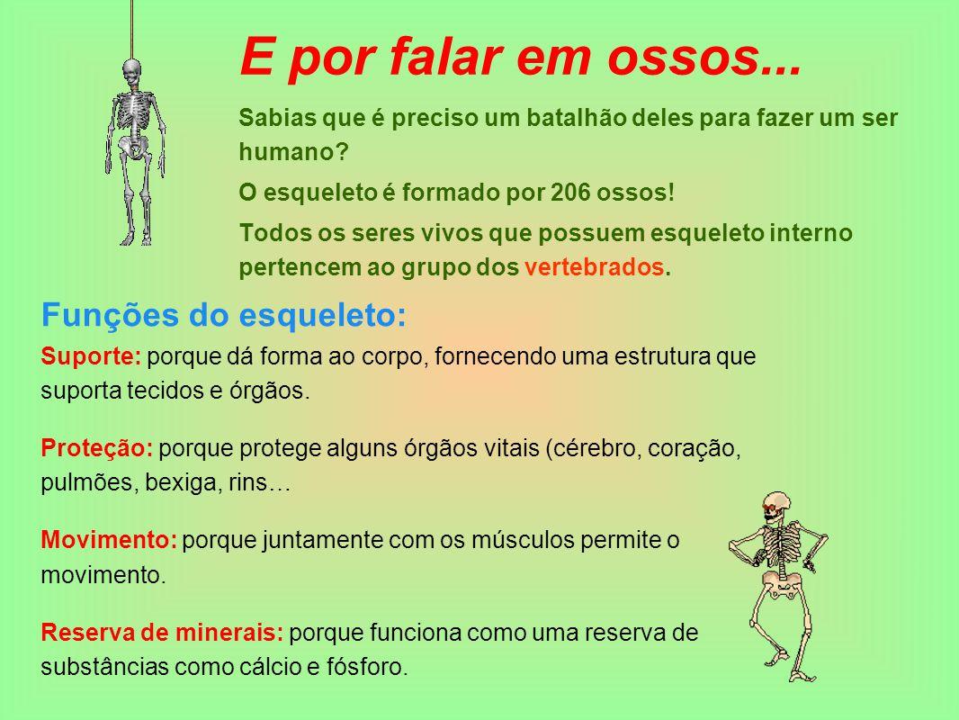 E por falar em ossos... Sabias que é preciso um batalhão deles para fazer um ser humano? O esqueleto é formado por 206 ossos! Todos os seres vivos que