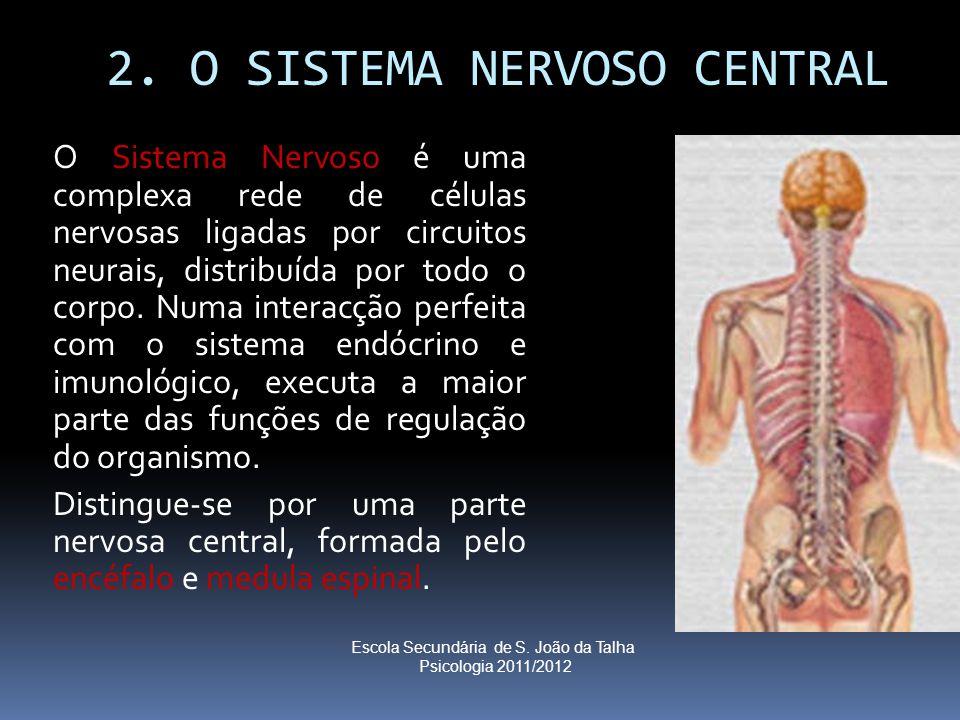 2. O SISTEMA NERVOSO CENTRAL O Sistema Nervoso é uma complexa rede de células nervosas ligadas por circuitos neurais, distribuída por todo o corpo. Nu