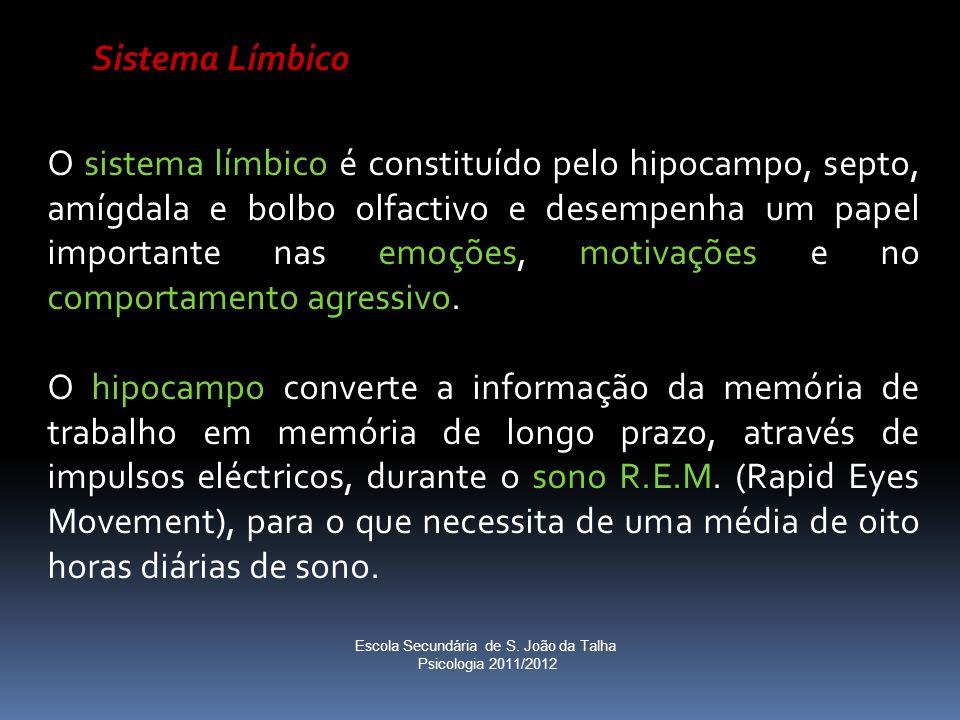 Sistema Límbico O sistema límbico é constituído pelo hipocampo, septo, amígdala e bolbo olfactivo e desempenha um papel importante nas emoções, motiva