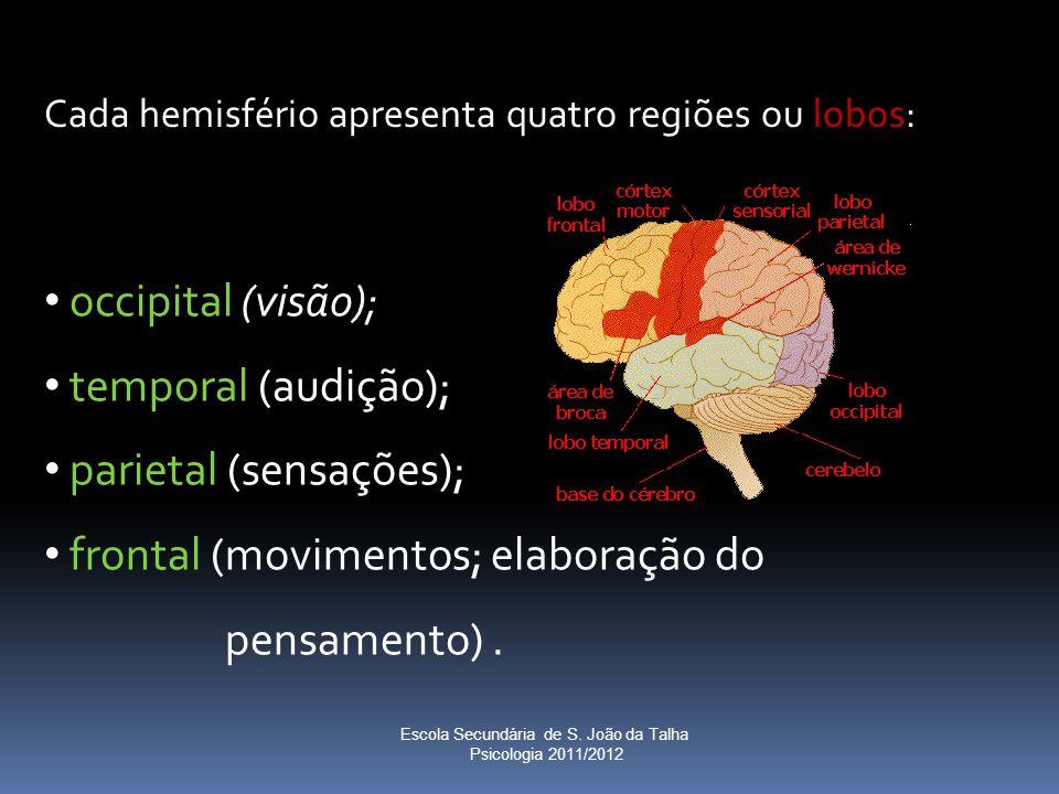 occipital (visão); temporal (audição); parietal (sensações); frontal (movimentos; elaboração do pensamento). Cada hemisfério apresenta quatro regiões