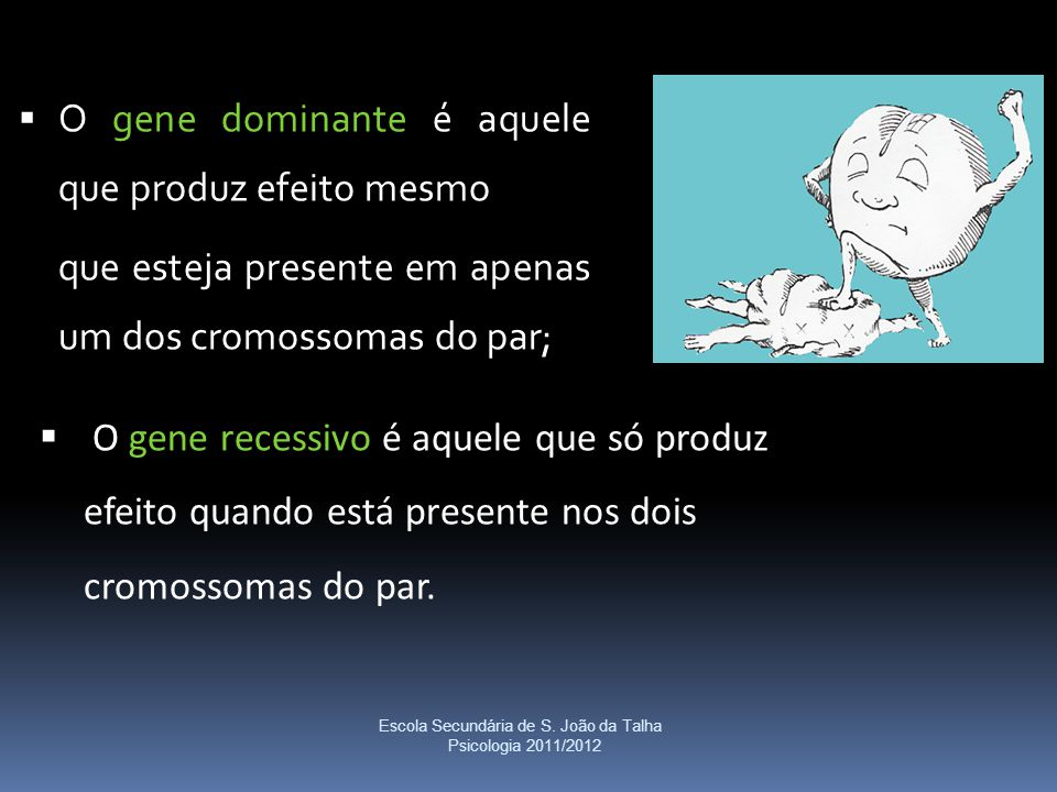  O gene recessivo é aquele que só produz efeito quando está presente nos dois cromossomas do par. Escola Secundária de S. João da Talha Psicologia 20
