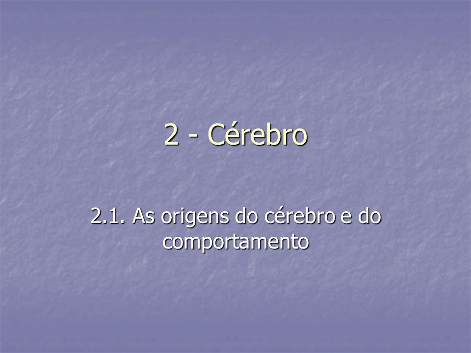 2 - Cérebro 2.1. As origens do cérebro e do comportamento