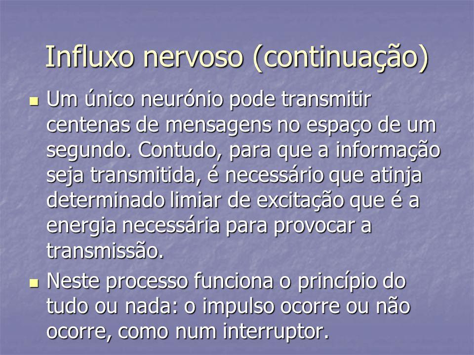 Influxo nervoso (continuação) Um único neurónio pode transmitir centenas de mensagens no espaço de um segundo. Contudo, para que a informação seja tra