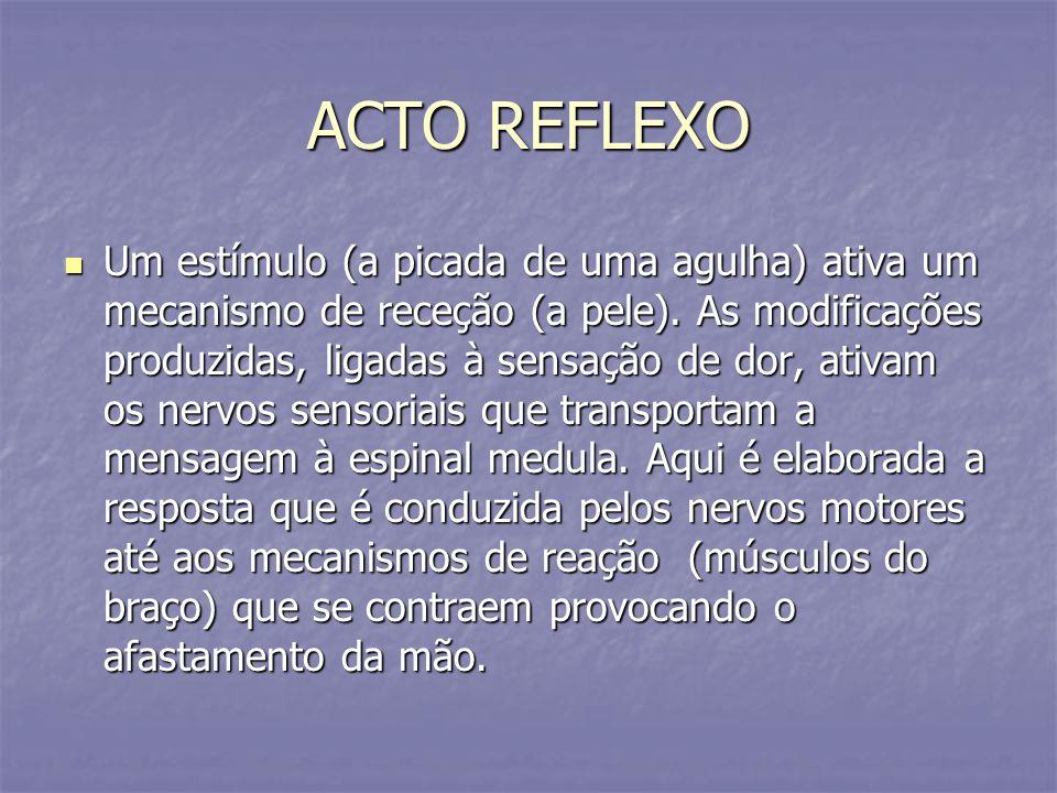 ACTO REFLEXO Um estímulo (a picada de uma agulha) ativa um mecanismo de receção (a pele). As modificações produzidas, ligadas à sensação de dor, ativa