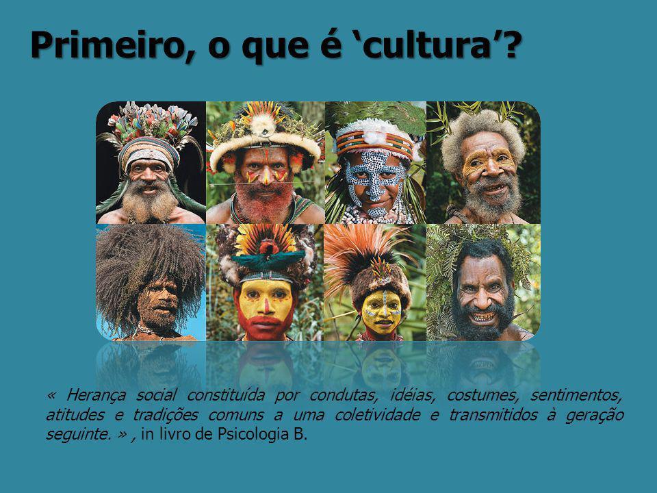 Primeiro, o que é 'cultura'? « Herança social constituída por condutas, idéias, costumes, sentimentos, atitudes e tradições comuns a uma coletividade