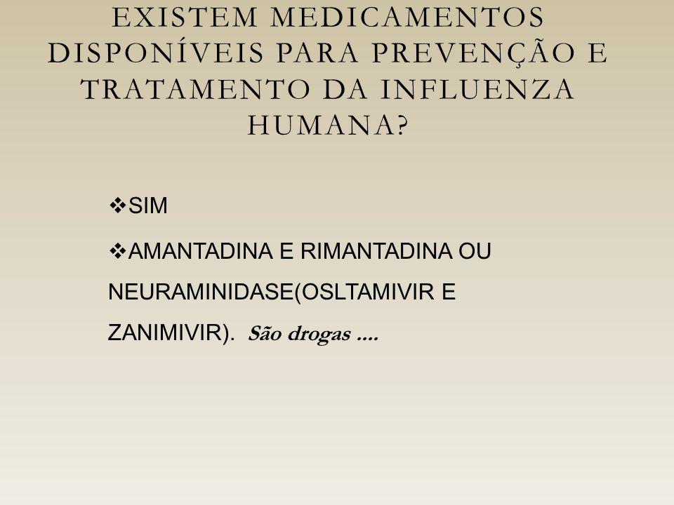 EXISTEM MEDICAMENTOS DISPONÍVEIS PARA PREVENÇÃO E TRATAMENTO DA INFLUENZA HUMANA.