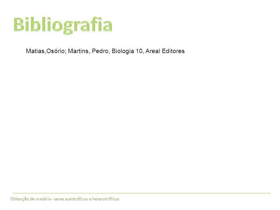Obtenção de matéria - seres autotróficos e heterotróficos Matias,Osório; Martins, Pedro, Biologia 10, Areal Editores