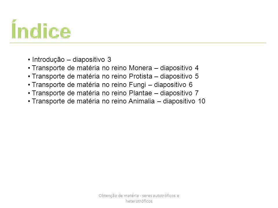 Obtenção de matéria - seres autotróficos e heterotróficos Introdução – diapositivo 3 Transporte de matéria no reino Monera – diapositivo 4 Transporte