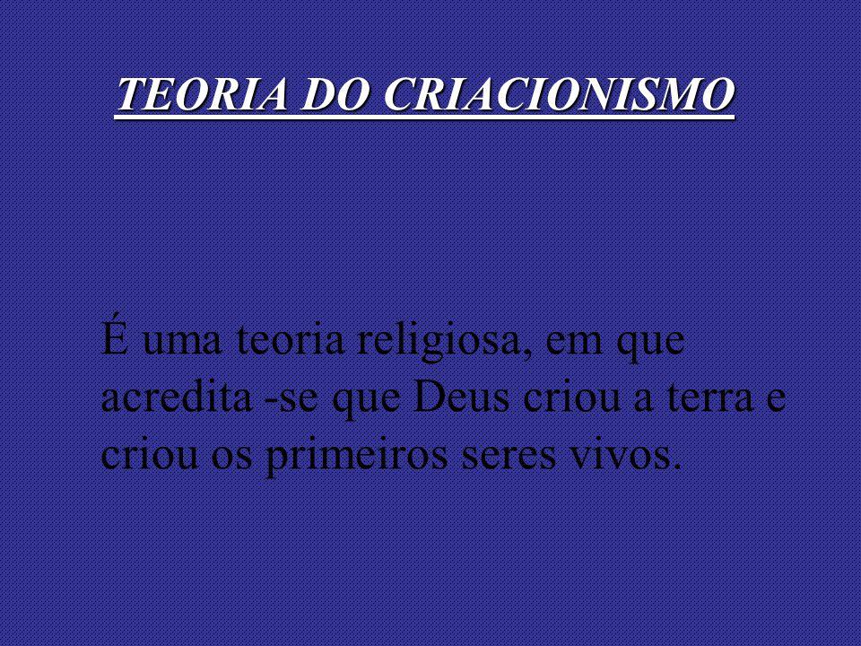 É uma teoria religiosa, em que acredita -se que Deus criou a terra e criou os primeiros seres vivos. TEORIA DO CRIACIONISMO