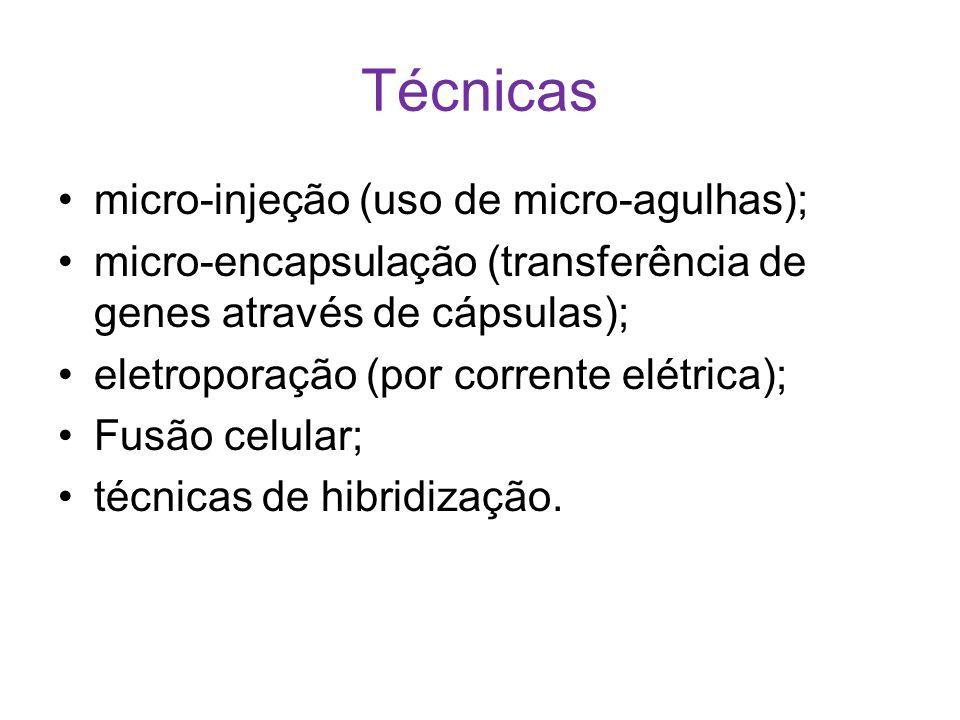 Técnicas micro-injeção (uso de micro-agulhas); micro-encapsulação (transferência de genes através de cápsulas); eletroporação (por corrente elétrica);