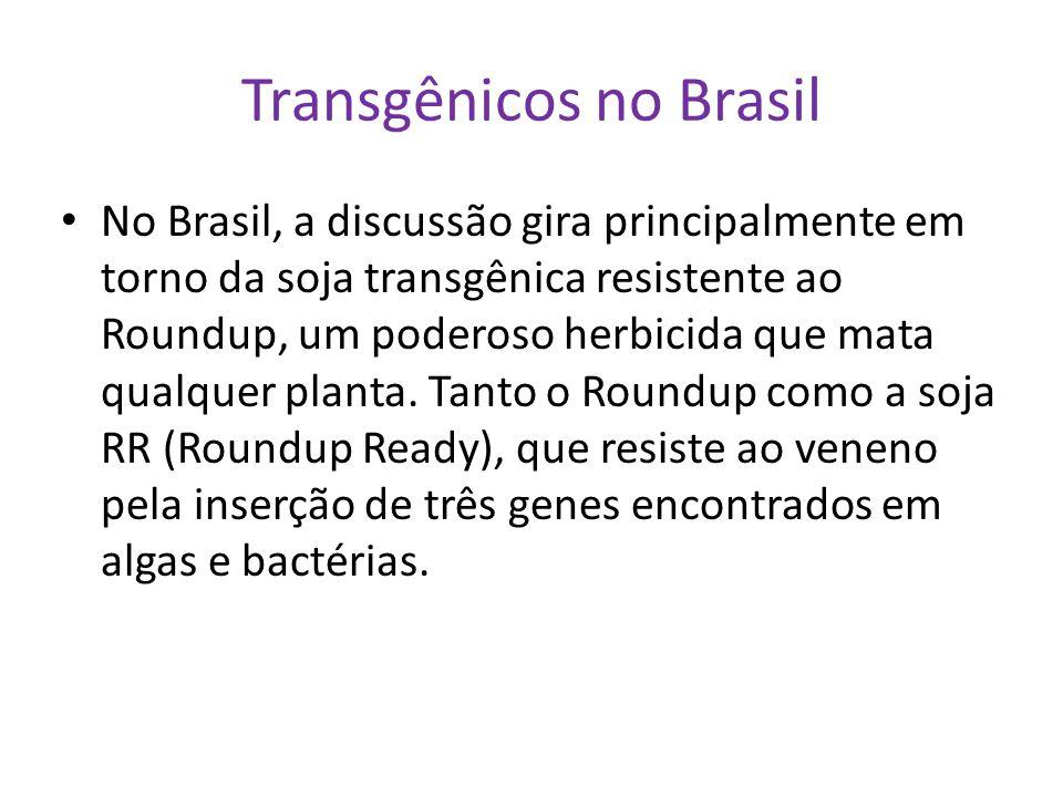 Transgênicos no Brasil No Brasil, a discussão gira principalmente em torno da soja transgênica resistente ao Roundup, um poderoso herbicida que mata q