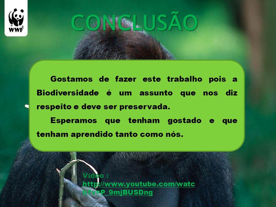 Gostamos de fazer este trabalho pois a Biodiversidade é um assunto que nos diz respeito e deve ser preservada.