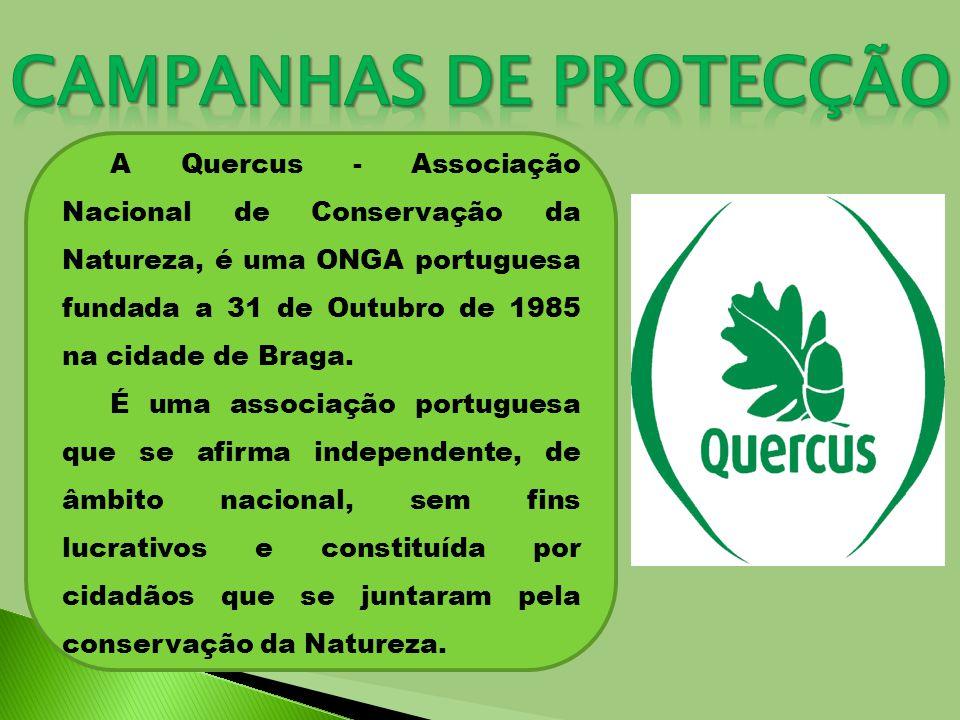 A Assembleia Geral das Nações Unidas declarou o ano de 2010 como Ano Internacional da Biodiversidade, com o propósito de aumentar a consciência sobre a importância da preservação da biodiversidade em todo o mundo.