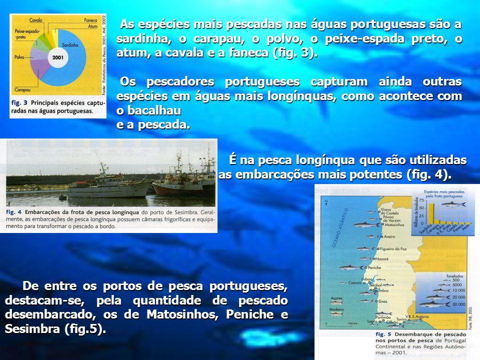 As espécies mais pescadas nas águas portuguesas são a sardinha, o carapau, o polvo, o peixe-espada preto, o atum, a cavala e a faneca (fig.
