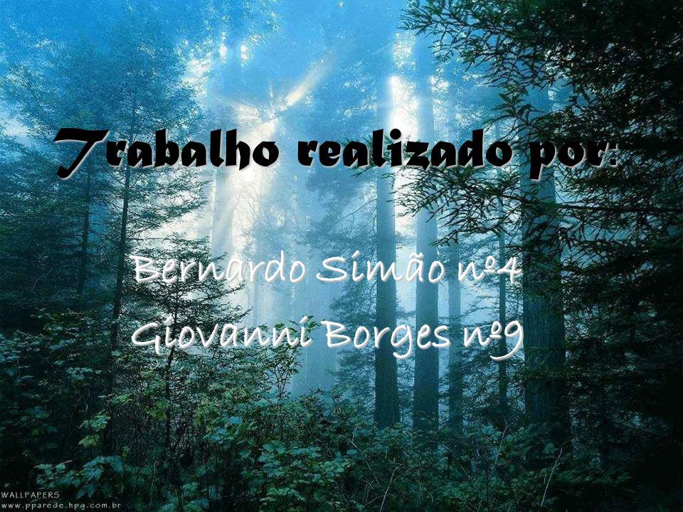 Trabalho realizado por : Bernardo Simão nº4 Giovanni Borges nº9