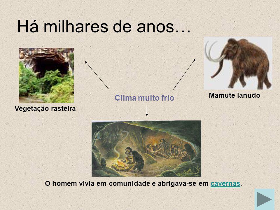 Alimentação Recolhiam na natureza tudo o que esta oferecia: Frutos silvestres Raízes Grãos Caça Pesca