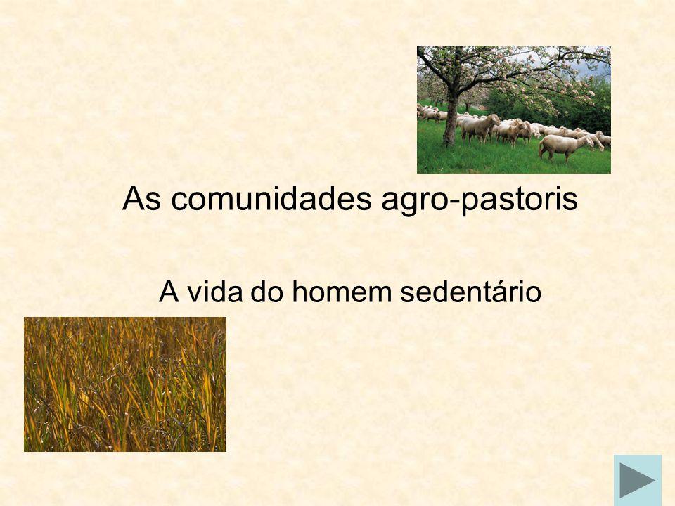 As comunidades agro-pastoris A vida do homem sedentário