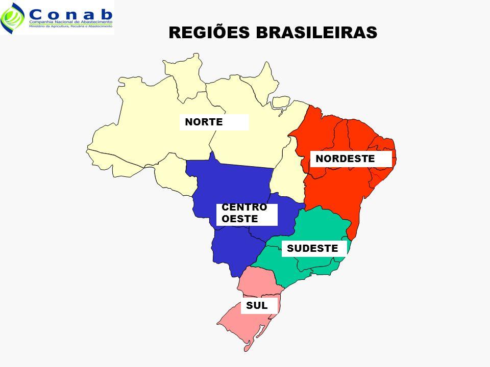 NORTE NORDESTE CENTRO OESTE SUDESTE SUL REGIÕES BRASILEIRAS