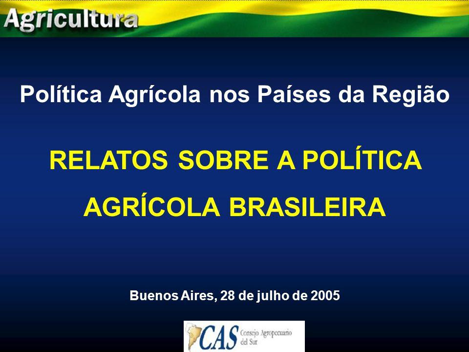 Política Agrícola nos Países da Região RELATOS SOBRE A POLÍTICA AGRÍCOLA BRASILEIRA Buenos Aires, 28 de julho de 2005